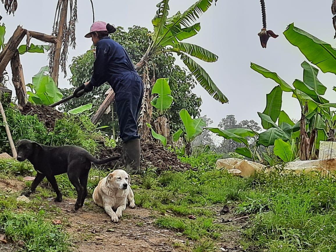 Laura con sus ayudantes Caninos