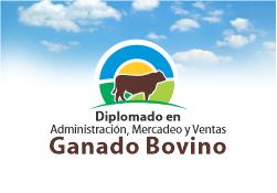 Diplomado en Administración, Mercadeo y Ventas Ganado Bovino